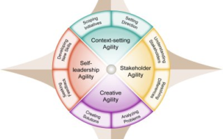 Leadership Agility Star